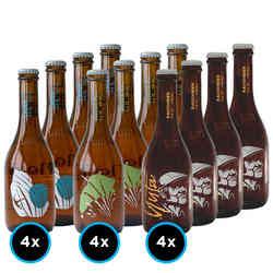 KIT LA MONTAÑA Nº1: 12x Variedades de la Cervecería La Montaña